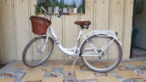 copy of BLACK GOAT City 3 אופני עיר קלאסיות