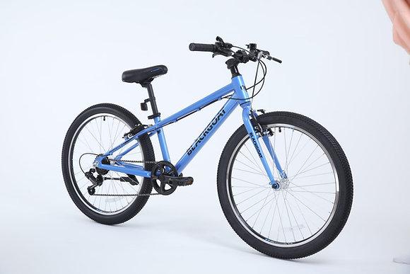 DOMESTIC 24 אופניי