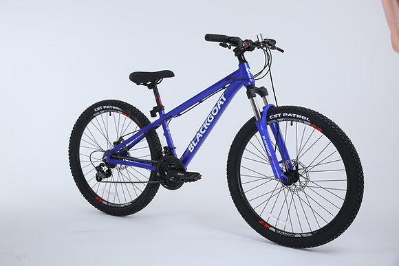 BG ALPINE XS 26 אופניי