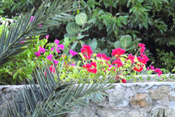 SM399 Stone Wall with Flowers