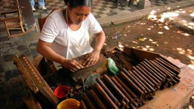 Dominican Lady Making Cigars