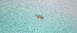 Vimeo_Single_Swimmer_1