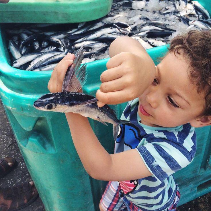 Boy with Flying Fish, Barbados