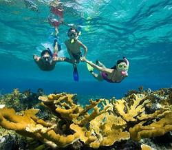 Jamaica Snorkeling