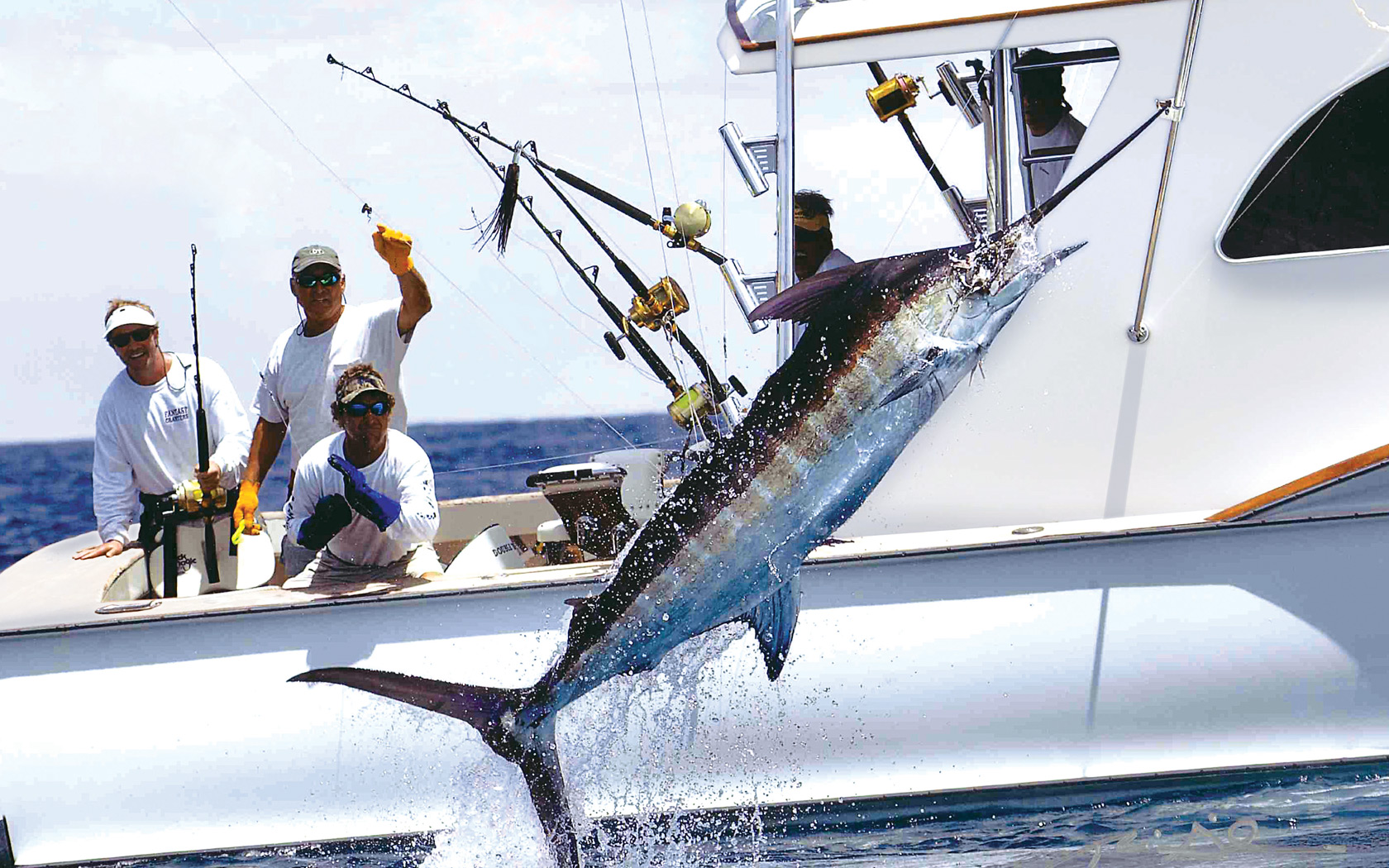 Marlin Fishing off Bimini
