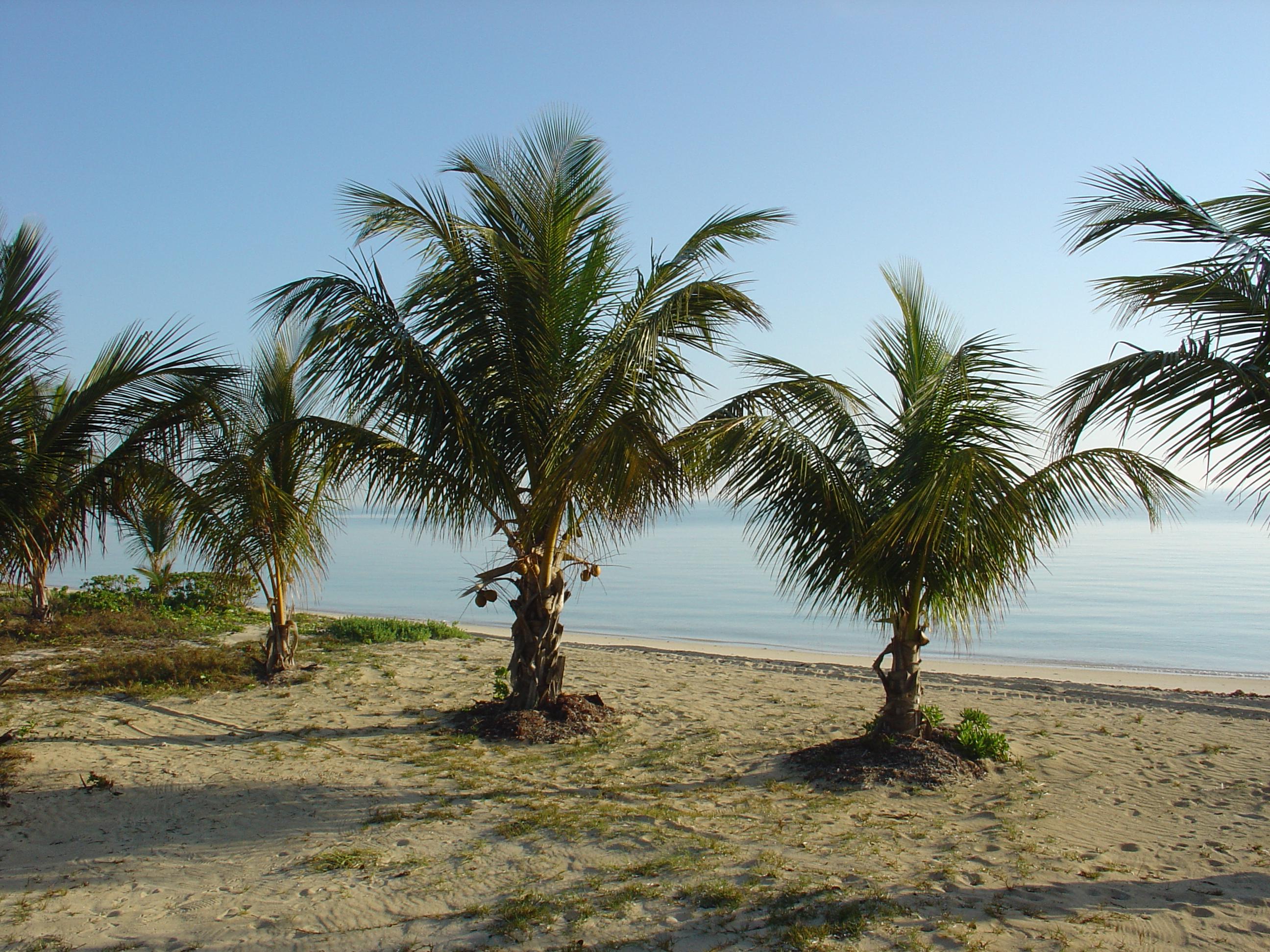 Private Island Villa View, Bahamas