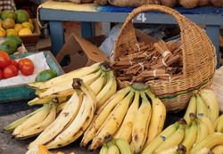 Antigua Produce Market