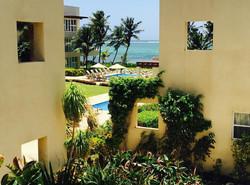 BL105 Tropical Gardens