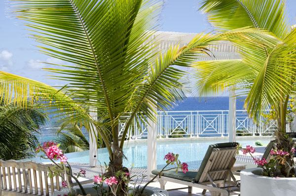 SM330 Palm-shaded Pool Deck