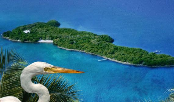 Private Island, Florida (FL113)