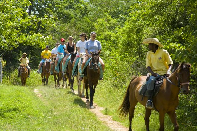 Mountain Horseback Riding
