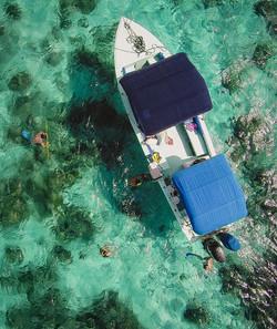 BL105 Snorkeling