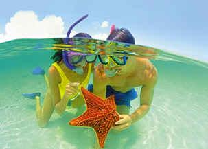 Bahamas Snorkeling with Starfish