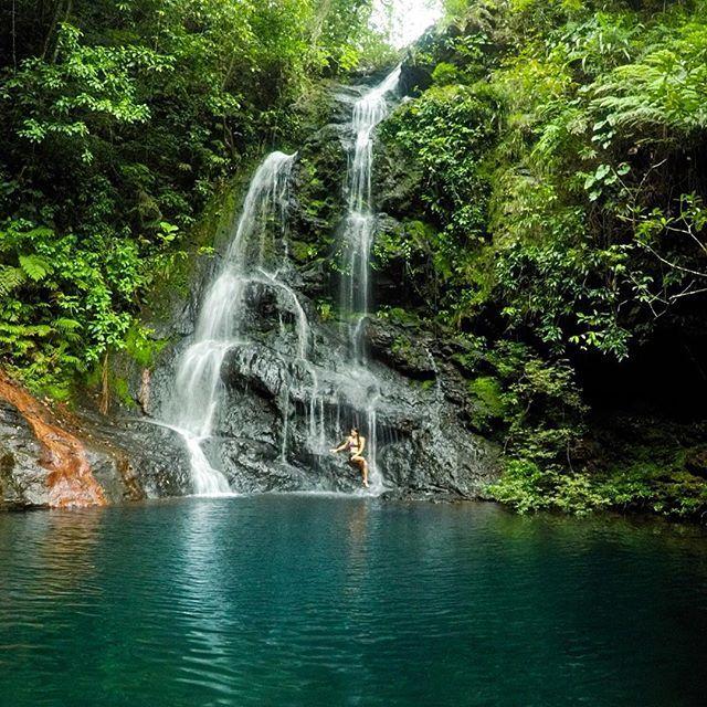 Tiger Fern Falls