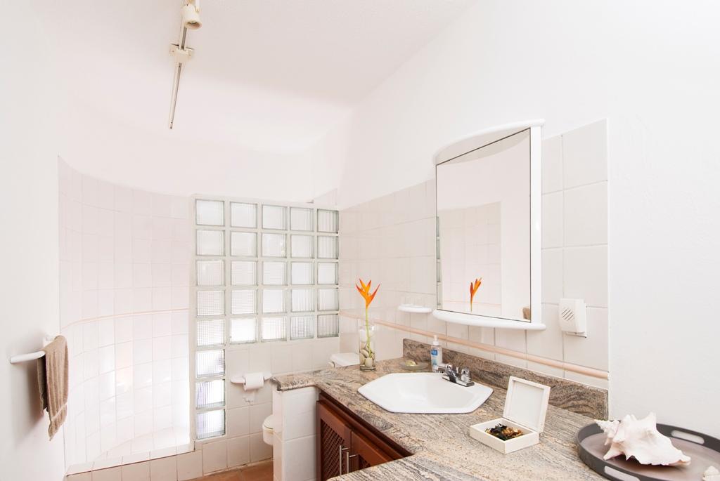SM310 Bathroom 2
