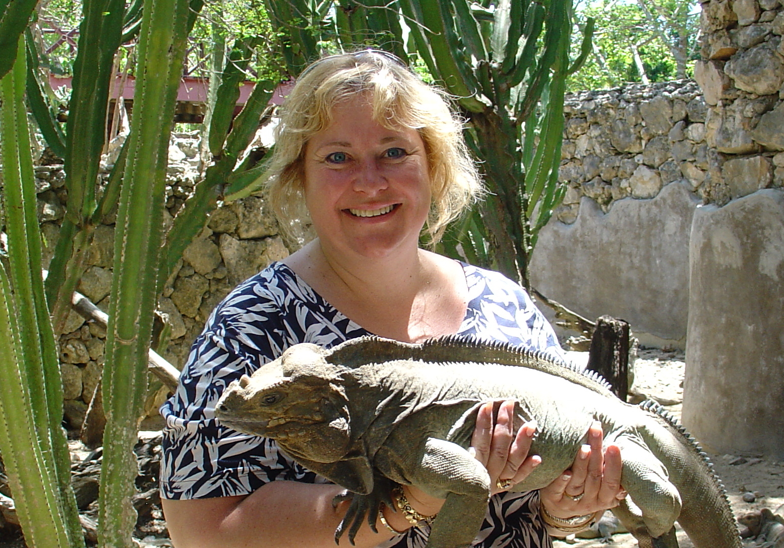 Manati Park Iguana