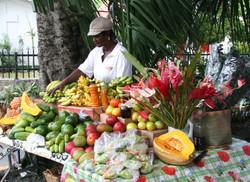 BVI Market