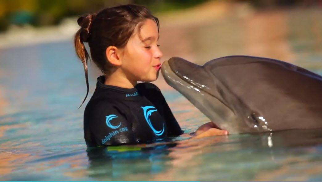 Bahamas Dolphin Experience