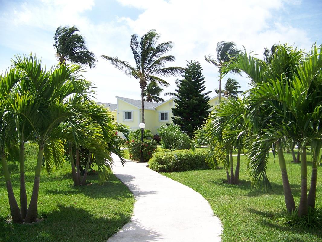 Walkway to Swimming Pool