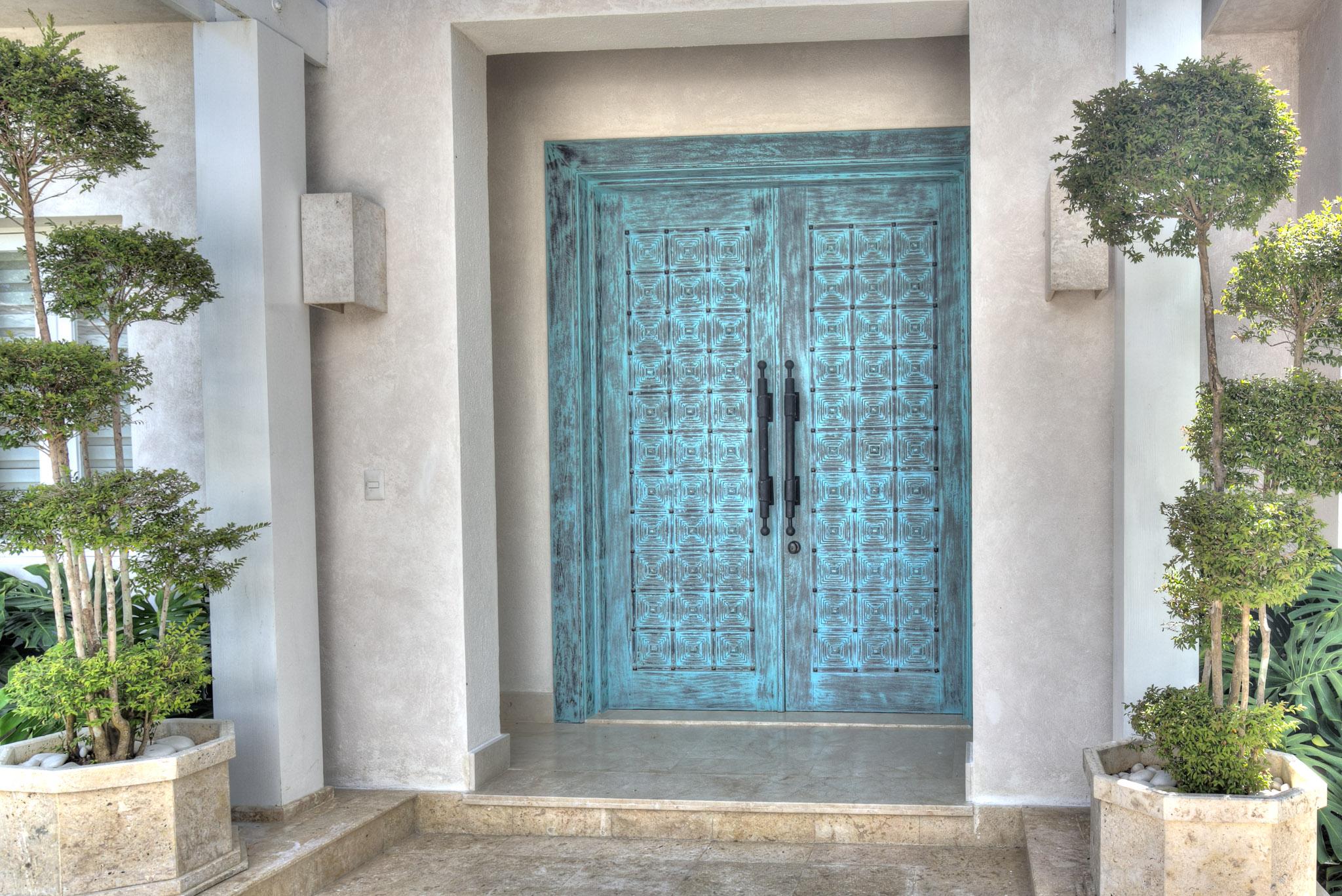 DR305 Front Door