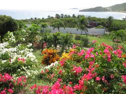 SM400 Beautiful Tropical Gardens