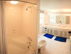 BB416 Master Bathroom