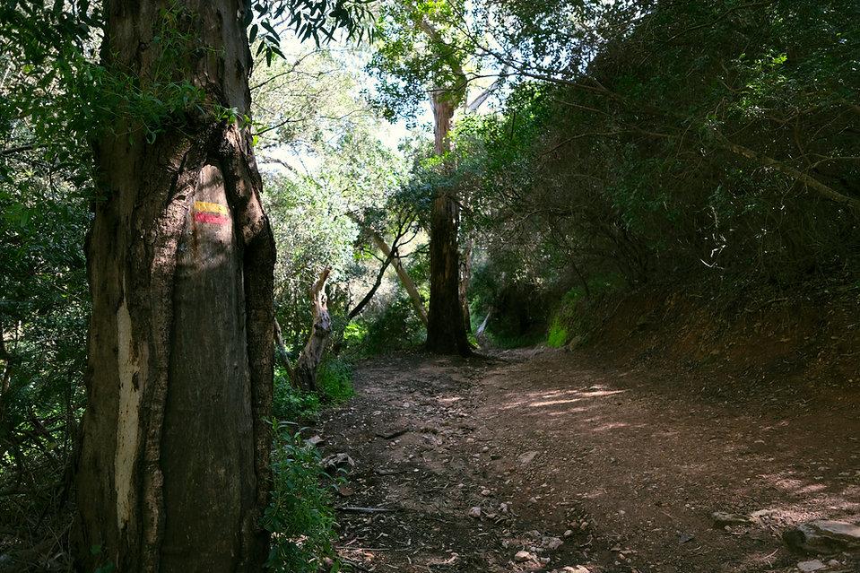 Arrábida Walking Trails   Sinalética