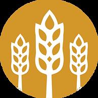 city harvest logo.png