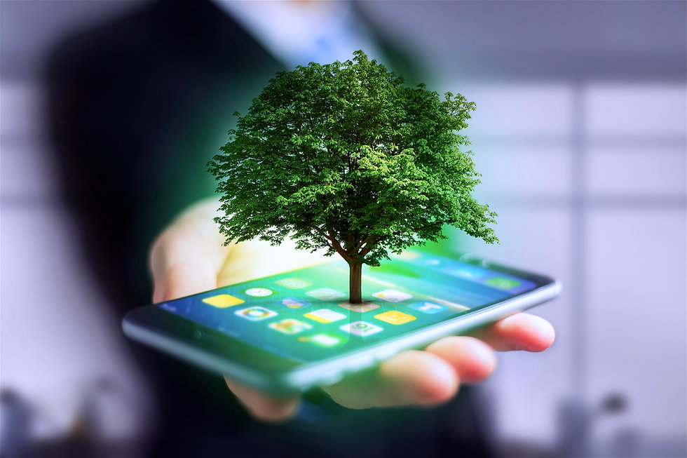Smartphone_Baum.jpg