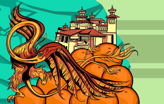phoenix in bhutan 8.jpg