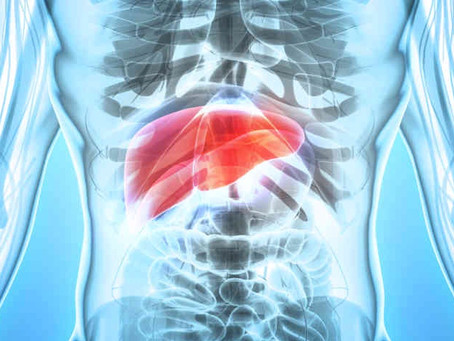 What You Can Learn When You Look at Your Liver