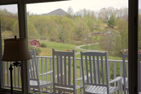 View from Living Room.jpg