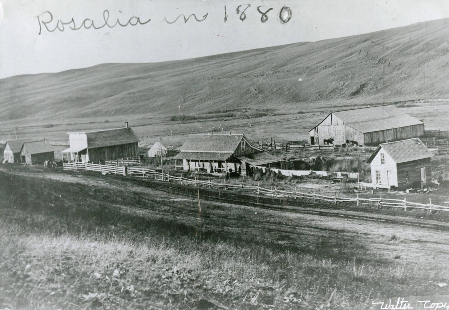 Rosalia_Washington_1880