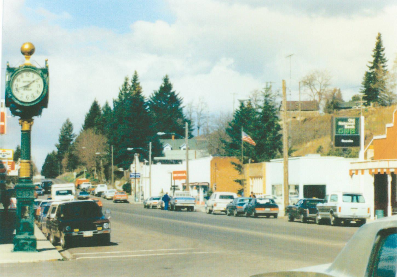 Business_district_on_Whitman_Street_Rosalia_Washington_1980