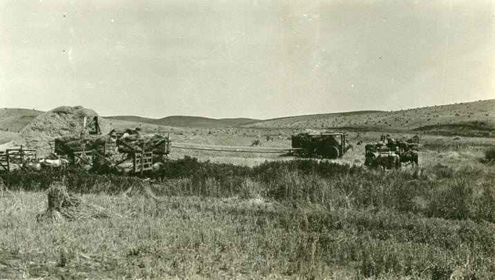 Threshing_during_harvest_near_Rosalia_Washington_1924 (1)