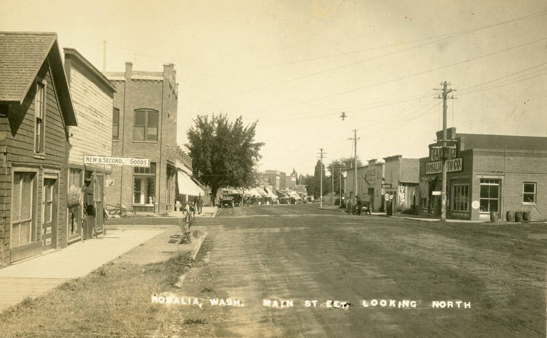 Rosalia_Washington_looking_north_circa_1920