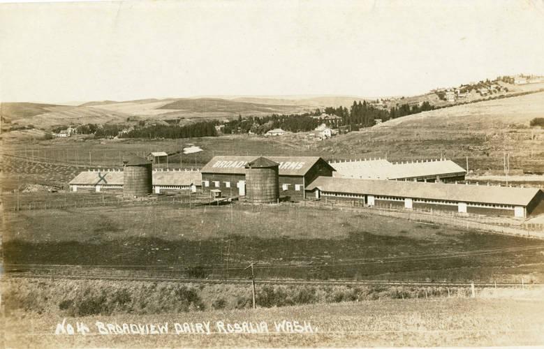 Broadway_dairy_near_Rosalia_Washington_circa_1925