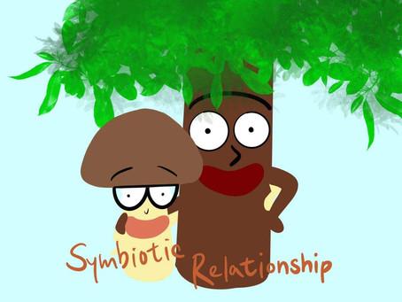 Nature's Friendships