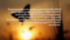 Butterfly sunrise text_edited.jpg