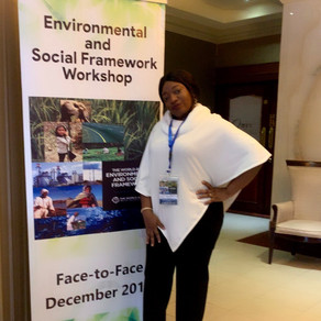 Environmental and Social Framework Training Sponsored by the World bank and attended by Richflood