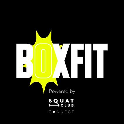 boxfit.png