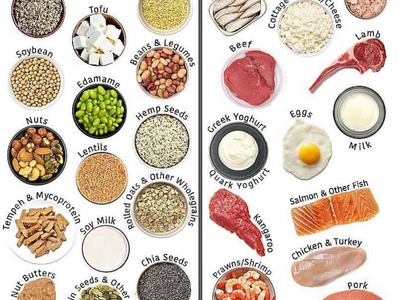 Why is dietary protein so important?