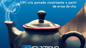 Dia Internacional do Chá 🍵