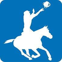 HORSE BALL.jpg