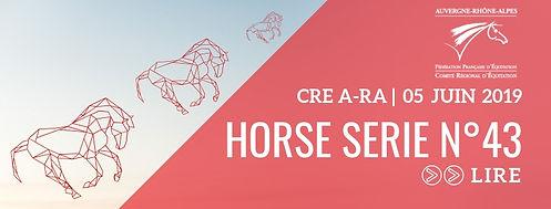HORSE SERIE 43.jpg