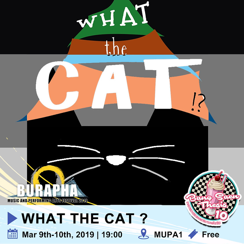 What the cat ?