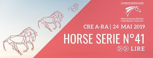 HORSE SERIE 41.jpg