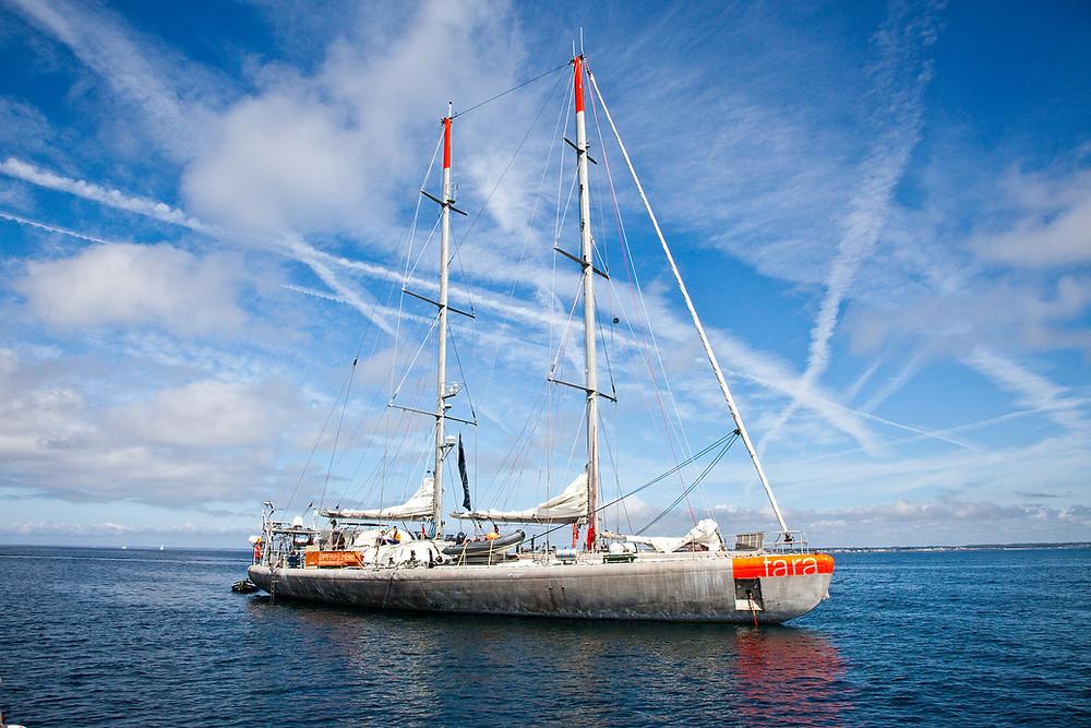 Tara Ocean Tara Expeditions.jpg