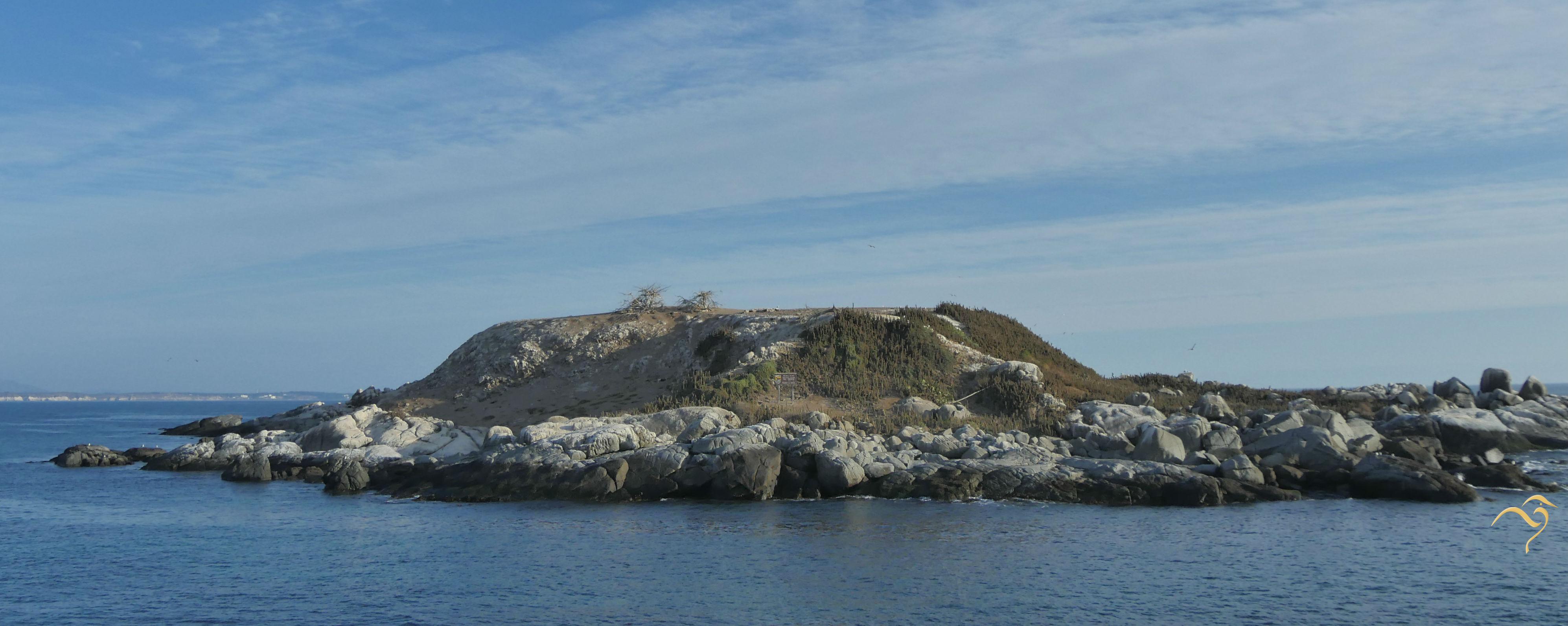 Isla Cachagua