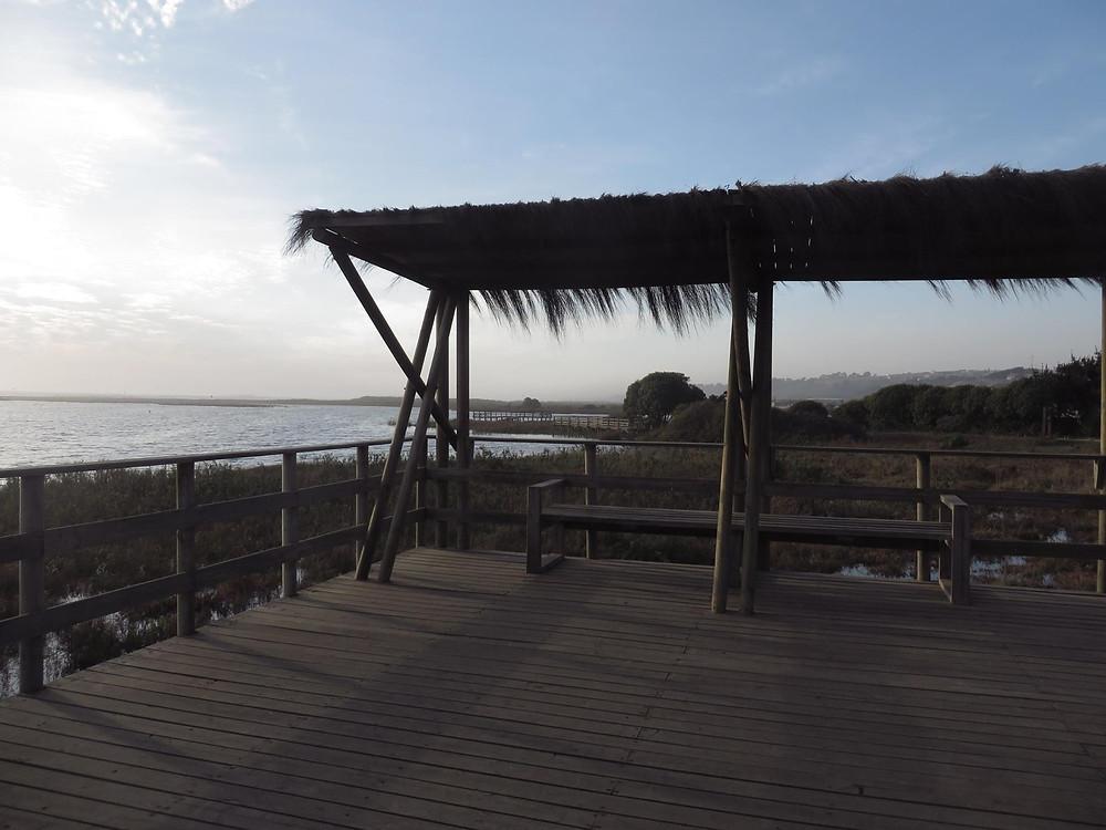 Humedal La Isla Concon